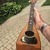 Melonbacked mandolin