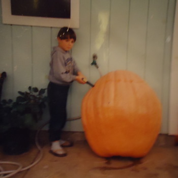 Photograph  My son years ago Giant Pumpkin Contest!!! and graduation!!  UCSC
