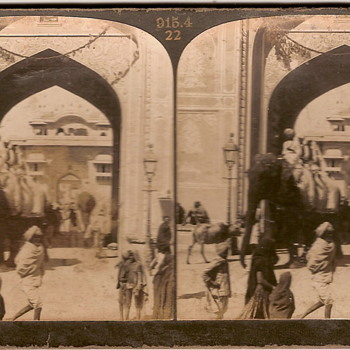 Elephant stereoscopic picture - Photographs