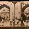 Elephant stereoscopic picture