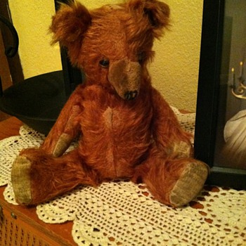 Help with Unknown Bear