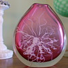 Clear and Cranberry Art Glass Vase with Cased White Flowered Veining-Any Ideas?