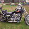 1982 Harley Davidson FXR