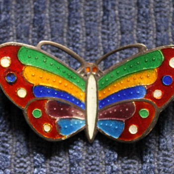 Another lovely enamel brooch - Costume Jewelry