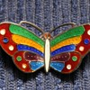 Another lovely enamel brooch