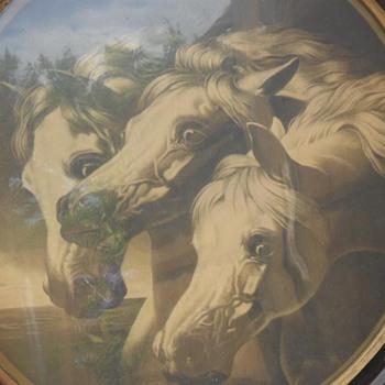 Horses - Photographs