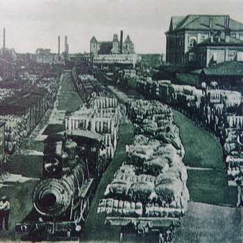 Cotton Scene at the Railyards in Houston, Texas. Pre-1907