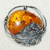 Amber Pin and Bangle