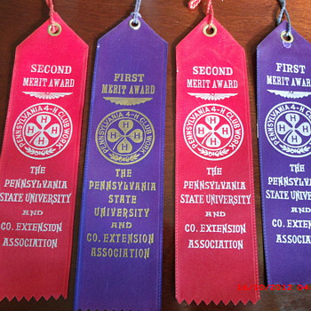 Early Sixties Penn State University 4-H Club Merit Ribbons - Outdoor Sports