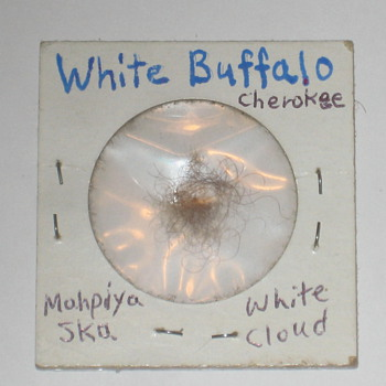 White Buffalo/Bison Hair