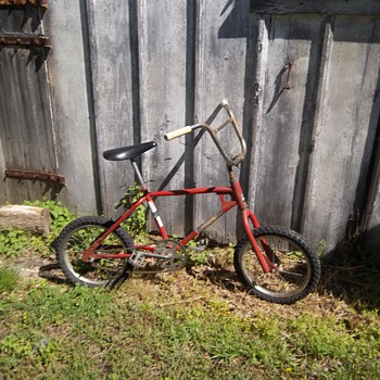 my 1980s bmx bike