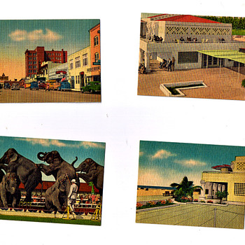 Retro Vintage Postcards From OLD SARASOTA, Ringling Musuem, Downtown,etc... - Postcards