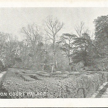 HAMPTON COURT PALACE - THE MAZE  - Postcards