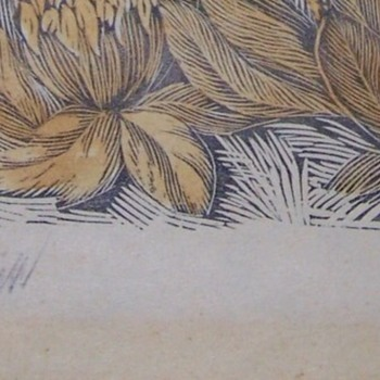 WW1- Germany Area Woodblock Flower Prints From Estate