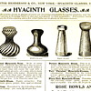 Hyacinth Vases? What is that about?