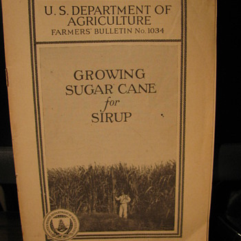Growing Sugarcane for Sirup - Paper