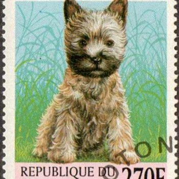"1998 - Benin - ""Cairn Terrier"" Postage Stamp"