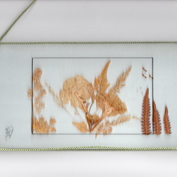 Pressed foliage and flowers between two glass panel, oustide string for decoration, signed by an artist or the maker. - Folk Art