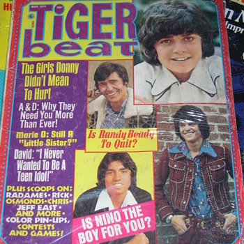 MORE VINTAGE TIGER BEAT MAGAZINES FROM 1974-75 - Paper