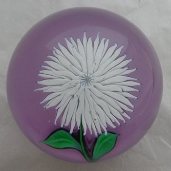St Louis White Dahlia on Mauve Ground 1974 - Art Glass
