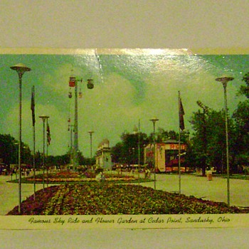 Cedar Point Postcard - Postcards
