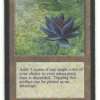 Expensive Magic: The Gathering collection, for fellow nerds of the 90s.