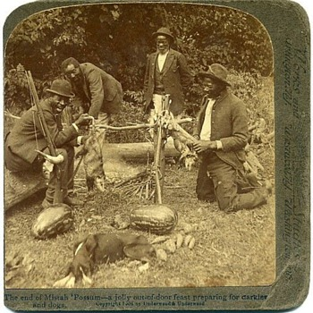 Black Americana Stereo View Possum Feed - Photographs