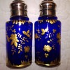 Unknown Deep Blue & Gold Shakers