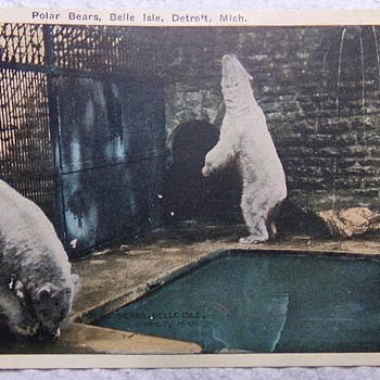 Polar Bears on Belle Isle, 1922