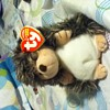 Ty beanie baby