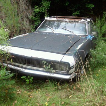 Abandoned cars in Delaware...Can you believe it?  No tresspassing signs too.