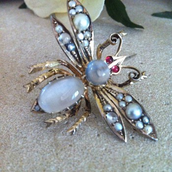 Super big winged insect victorian moonstones brooch. - Fine Jewelry