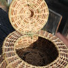 Woven Basket small with hinged lid.  Seminole Pine Needle Basket???