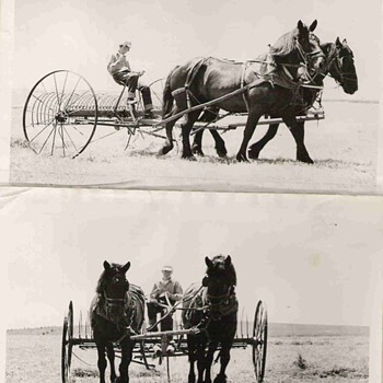 Our old Farm photo of Plow and Plow horses - Photographs