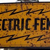 Electric fence sign with image of a bull
