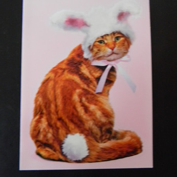 HAPPY EASTER CW...XO KITTY BUNNY - Animals