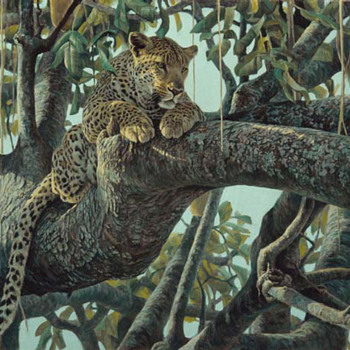 "Robert Bateman  -  ""LEOPARD IN A SAUSAGE TREE ""  -  Signed Artist Proof"