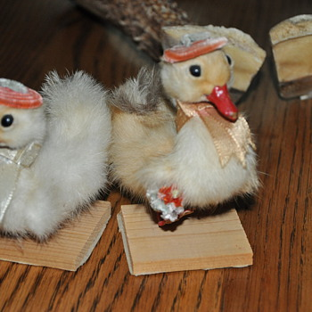 Two Old Lady Baby Ducklings - Animals