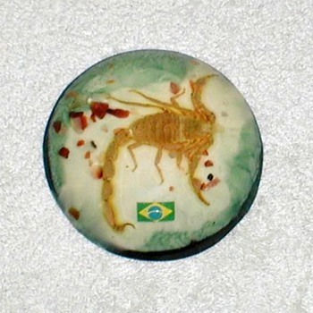 Scorpion Paperweight - Brazil