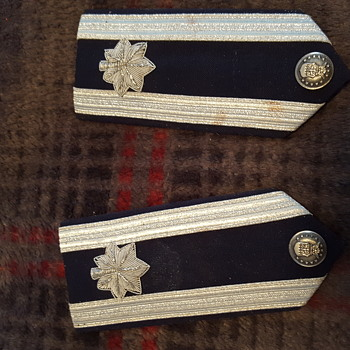 Officer silver leaf for shoulder. I got these in a storage unit. Hope to get more info on them. Any info would be nice.  - Military and Wartime