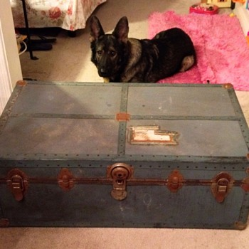 Steamer Trunk? - Furniture