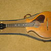 Orphan Mandolin without a name 