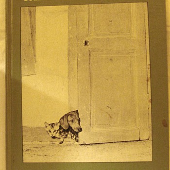 A wonderful old book about a dachshund and a kitten in French