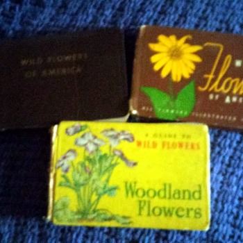 wild and woodland flowers of america - Books