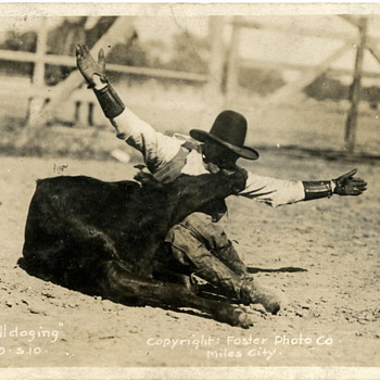 Montana Rodeo Action? - Animals