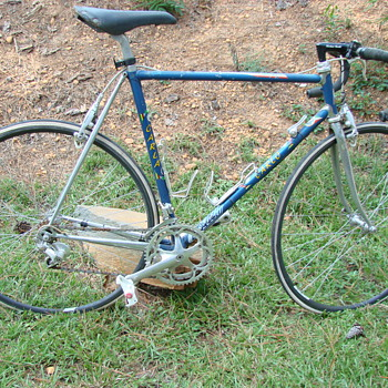 Vintage Italian 12 Speed,Gialma Carlo,Campy Equipped - Outdoor Sports