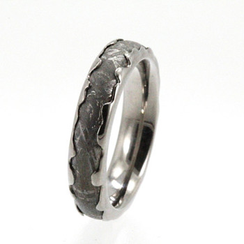 Gibeon Meteorite Palladium Wedding ring