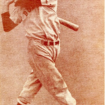 Ted Williams Arcade Card - Baseball