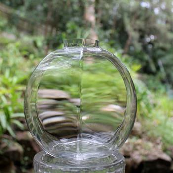 Glass by Boda - Art Glass