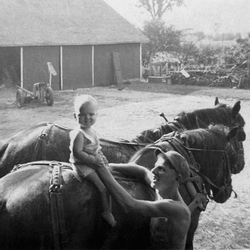 First Horse ride on a mighty BIG horse  - Photographs